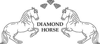 Diamond-logo-klein