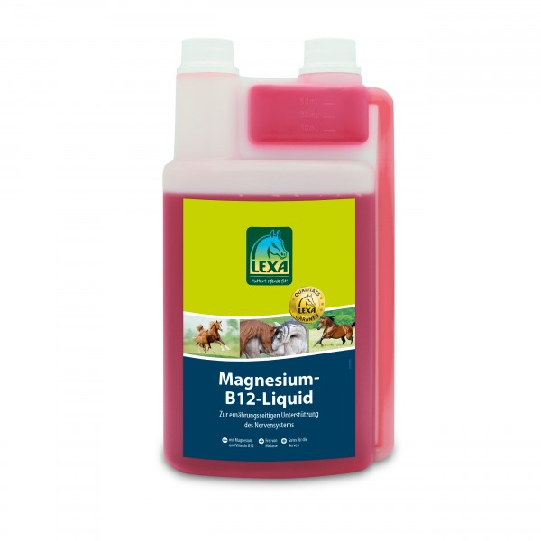 Magnesium-B12-Liquid